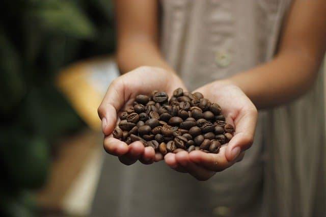 מה באמת לדעת לפני שמזמינים סיור קפה